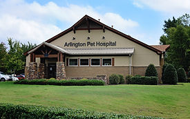 Arlington Pet Hospital, PLLC