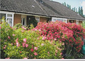 Woburn. Roses entry.jpg