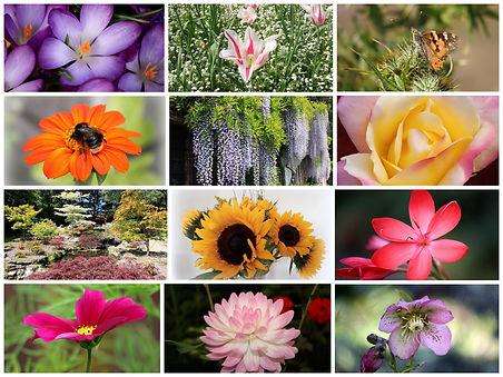 Garden and flowers calendar1.jpg