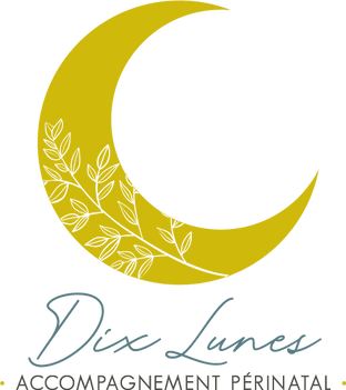 logo_carre_transparent.png