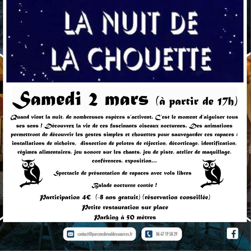La Nuit de la Chouette (1)