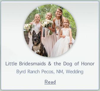 littlebridesmaids.jpg