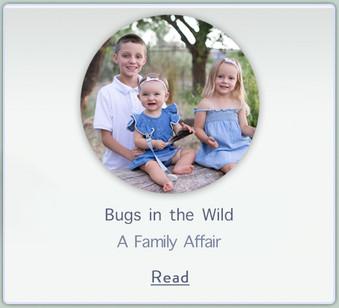 BugsintheWild.jpg