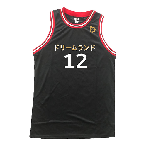 Standard DreamXLand Jerseys (Multiple Colors)