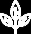 white leaf-01.png