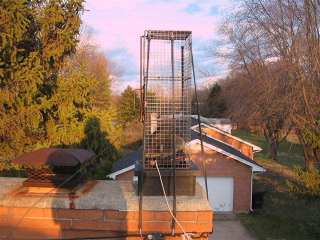 Chimney Trap for Raccoons