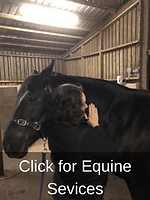 Click-for-Equine-Services-New.png