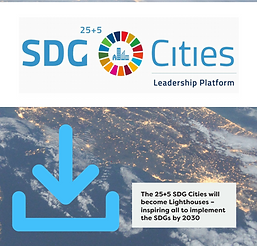 SDG City 25+5 Book Cover.PNG