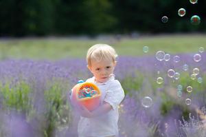 Lavender field Photoshoots