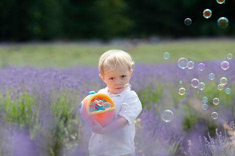 boy bubbles lavender farm