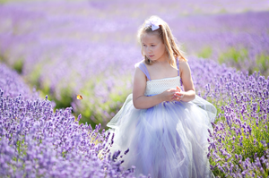 Lavender Field, Photoshoot