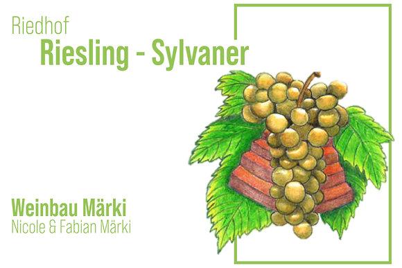 Riesling - Sylvaner