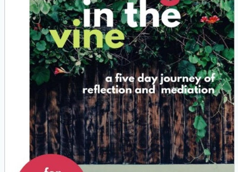 Abiding In The Vine, 5-Day Devotional for Worship Artists