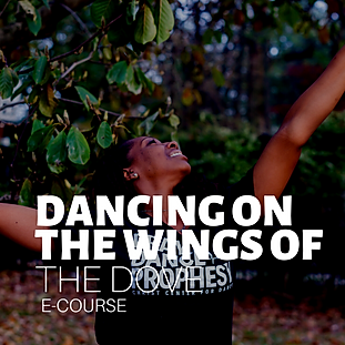 DANCE Courses (8).png