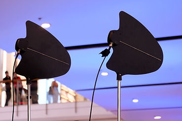 paddle antenna.jpg
