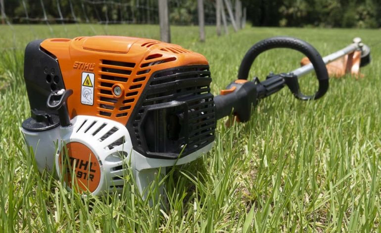Weed Cleaning and Shrub Pruning