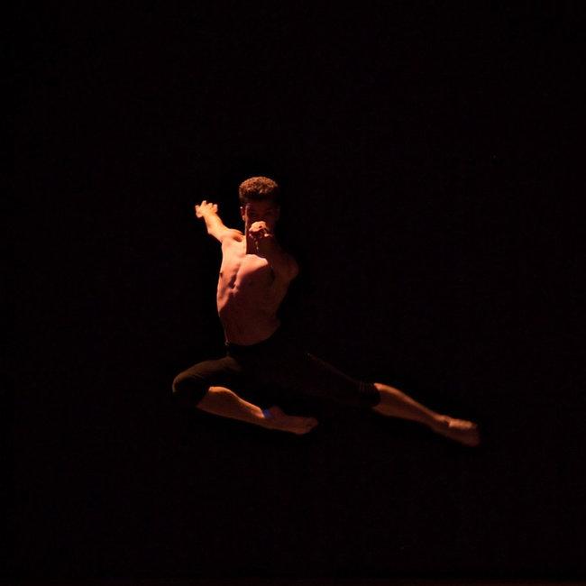 Amelia Island Dance Festival 2020