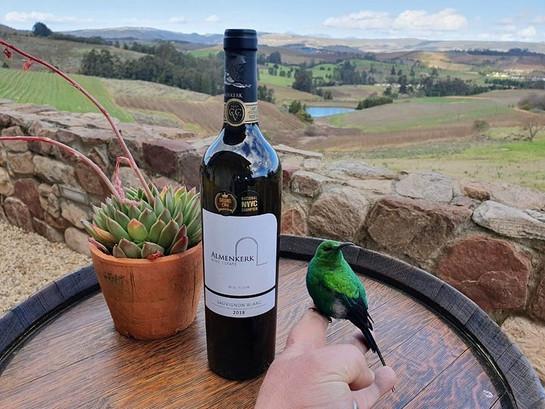 elgin wine tour