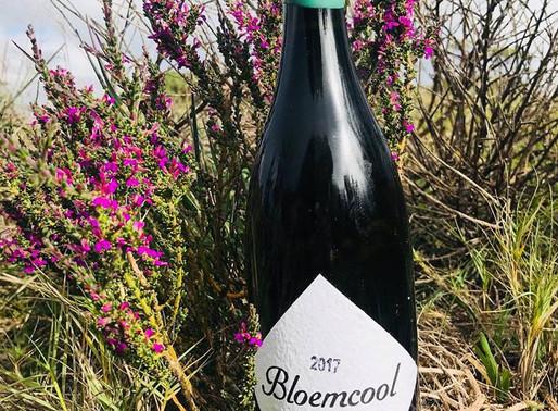 Bloemcool at Bergbok