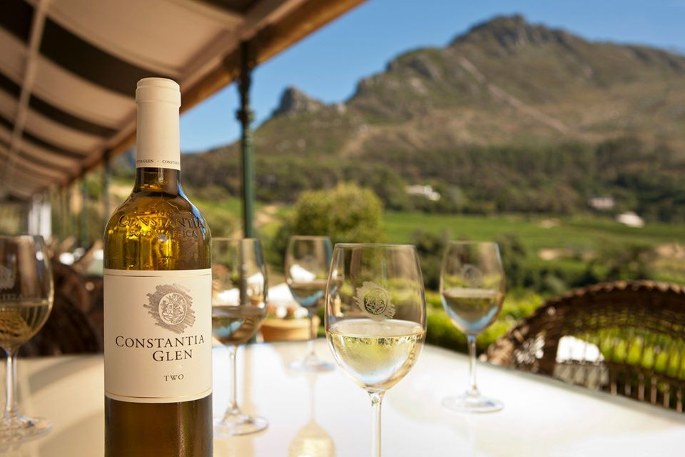 constantia wine tour view