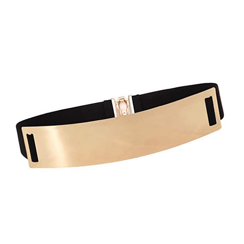 Wide Plated Belt