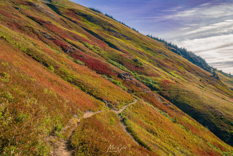 9-12 (m1,278) Colorful Hillsides In Northern Washington