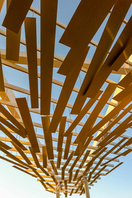 Rambing shade structure