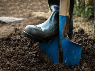 3 Ways To Prep Your Garden For Fall