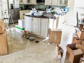 8 Things That Drive Your Movers Completely Insane