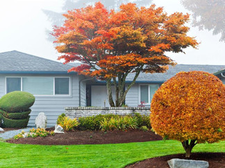Is Fall the New Spring Market in Real Estate?