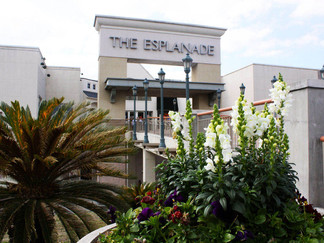 The Esplanade mall in Kenner to change ownership