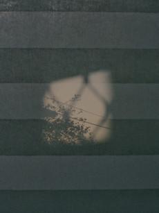 Negative0-17-12A(1).jpg