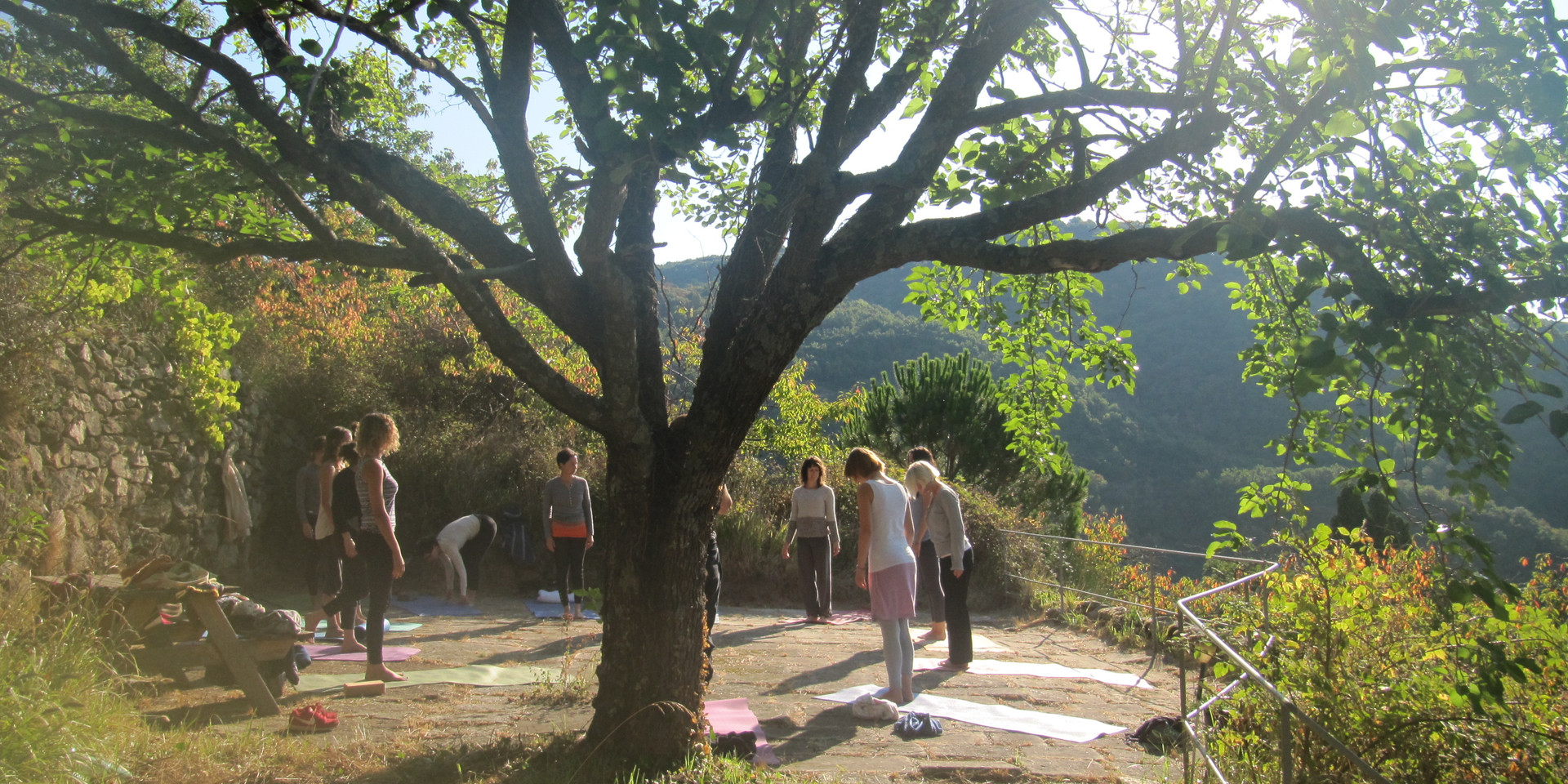 Kundalini Yoga 200h Training - The Tree