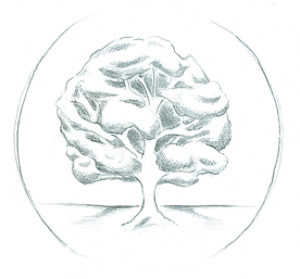tree_full.png