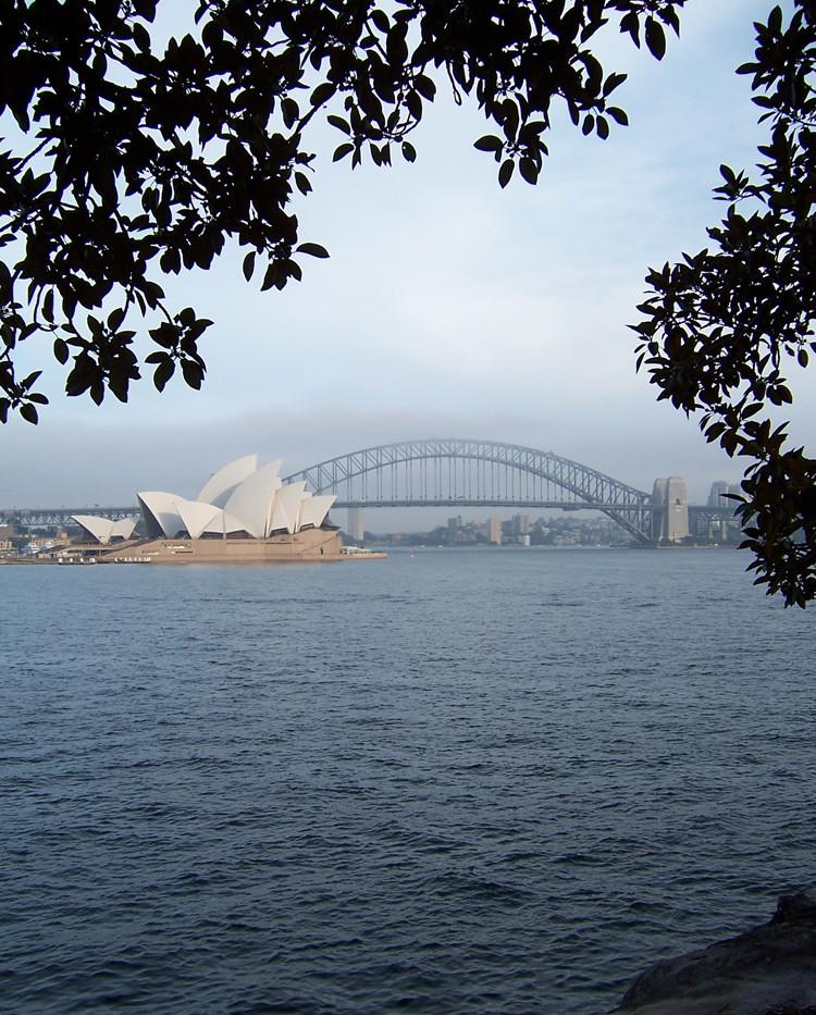 South Pacific_Sydney Harbor 2_RD.jpg