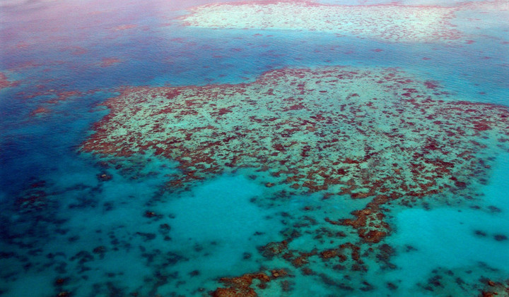 great-barrier-reef-261720_1920.jpg