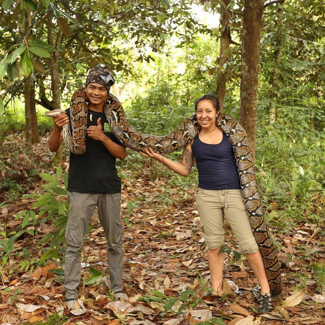 Our guide Angga and Priscilla from the USA, posing with a large Reticulated Python (Malayopython reticulatus) in Borneo