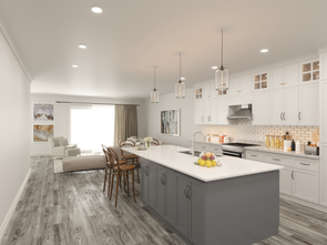 Open Kitchen and Living spaces