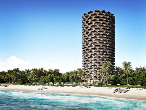 Torre Palm