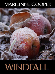 windfall front cover.jpg