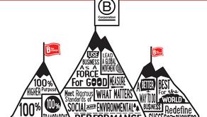 To B or not to B? Why wouldn't you B a B Corp?