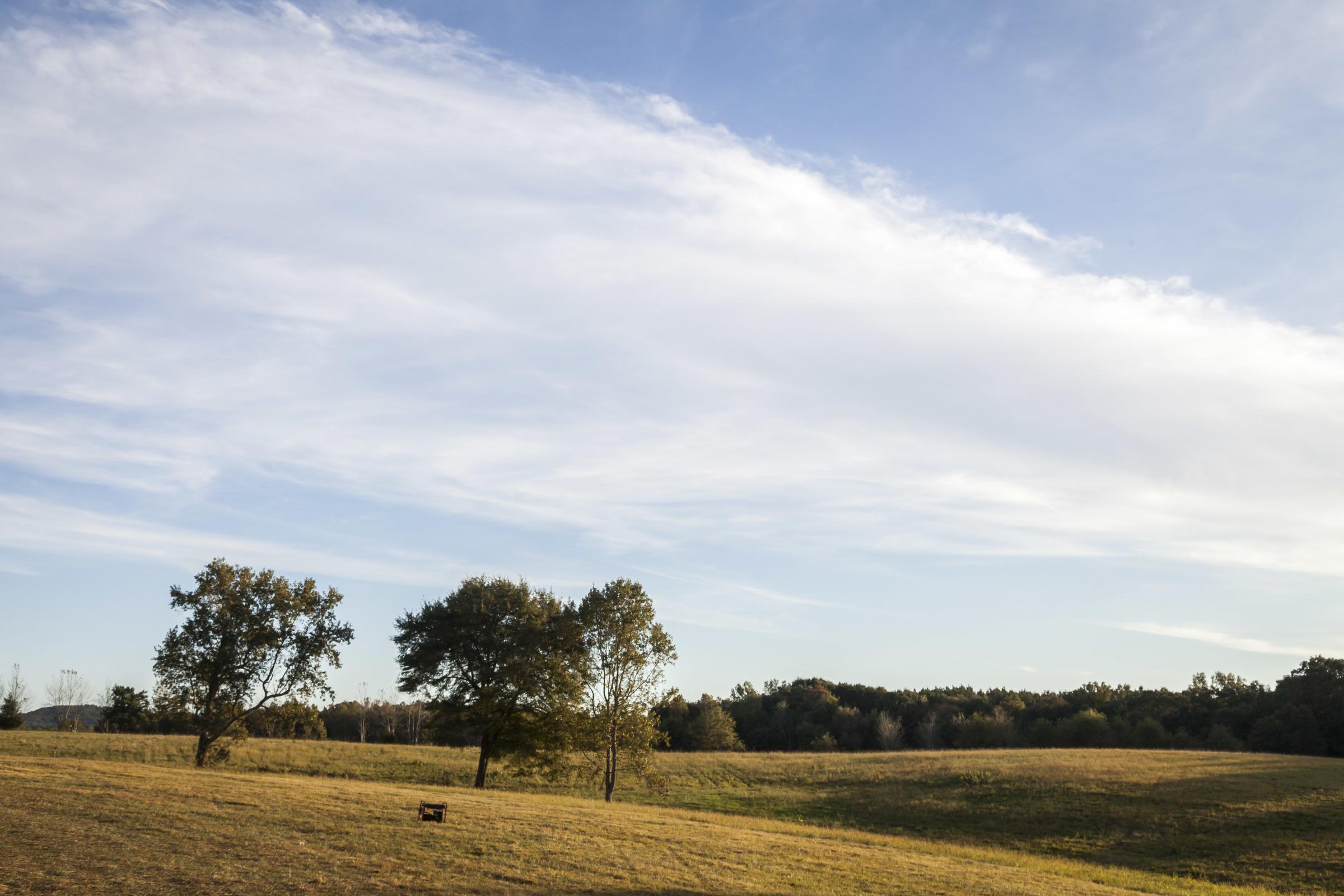 Pasture skies.jpg