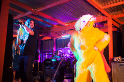 When a chicken got on stage.jpg