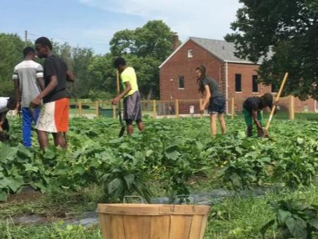 Flanner House Receives $120K to Expand King Commons Agrihood Initiative