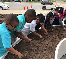 Learning-and-gardening-in-school-Image.j