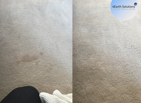 How To Eliminate Stains From Your Carpets