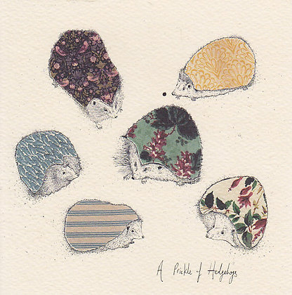 A Prickle of Hedgehogs