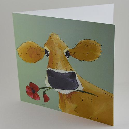 Poppy - 6 Cards