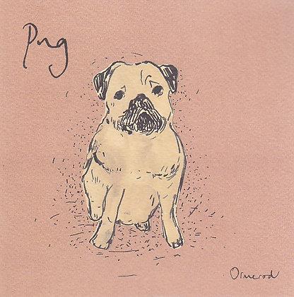 George the Pug