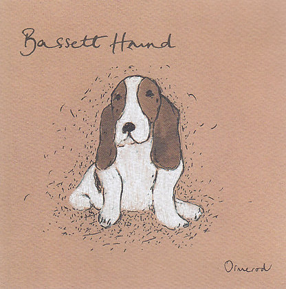 Gilbert the Bassett Hound